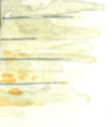 stylized watercolor of wood panneling