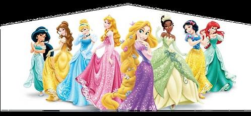 Princess Panel