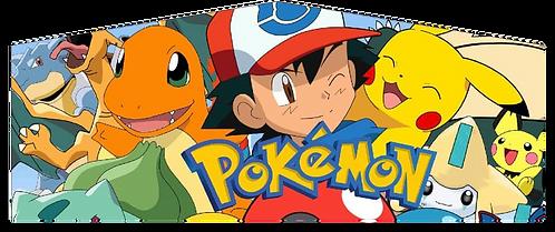 Pokemon Panel