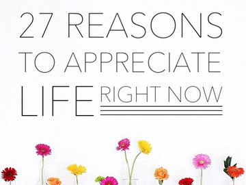 27 Reasons to Appreciate Life Right Now