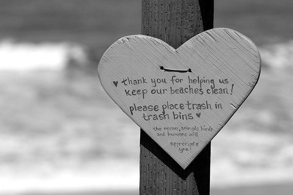 Miss Keep_our_beaches_Clean.jpg