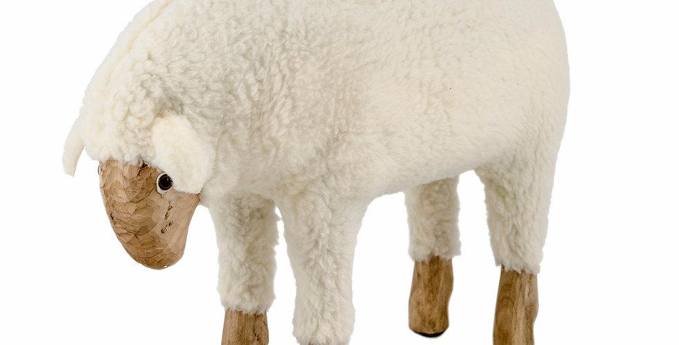 The Sheep - Medium - Eating