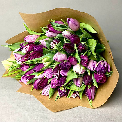 Purple Tulip Mix