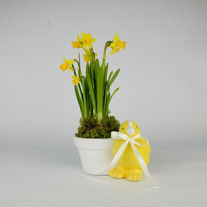 Easter Chicken Planter