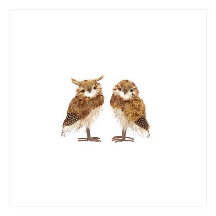 Owl - Large