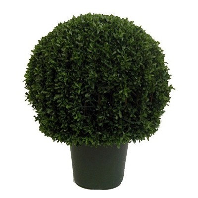 Boxwood Ball 30cm