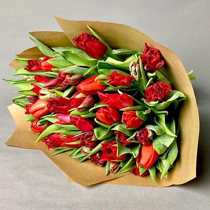 Sassy Red Tulip Mix