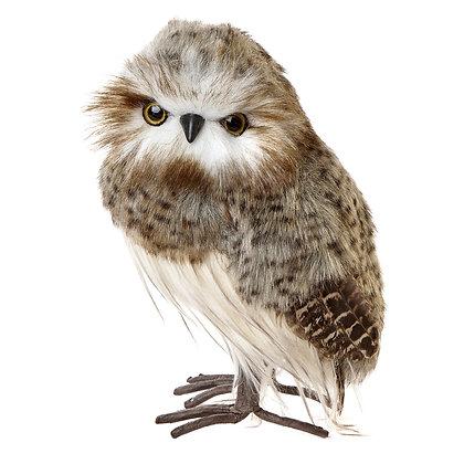 Owl - Medium