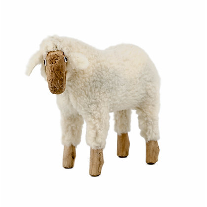 The Sheep - Small - Looking