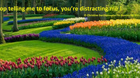 Stop telling me to focus!