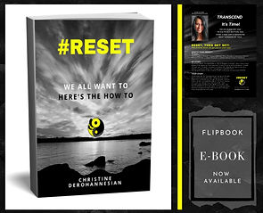 #RESET by Christine DerOhannesian 2020 e