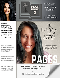 3. PAGES. Playbook by Christine DerOhann
