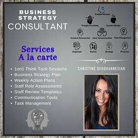 Christine DerOhannesian Consulting Servi