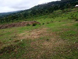 Uganda Land 1 (2).JPG