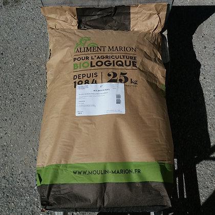 Blé BIO - Sac 25 Kg