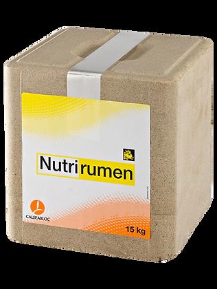 Nutrirumen - Bloc 15 Kg