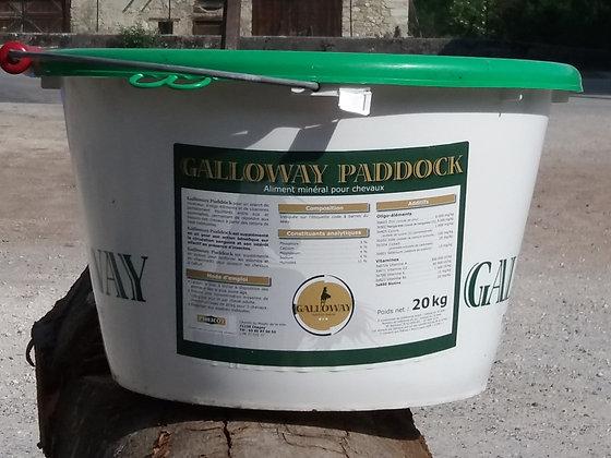 Galloway -  Paddock - 20 kg