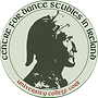 CDSI logo - circle cropped - colours.png