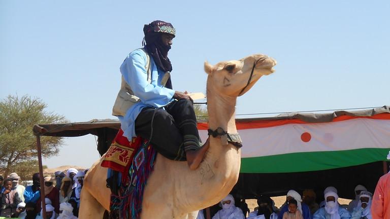 Séminaire webinaire du Camel Polo Africain