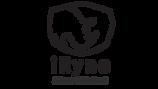 logo_iRyno_KnectekLabs_0415.png
