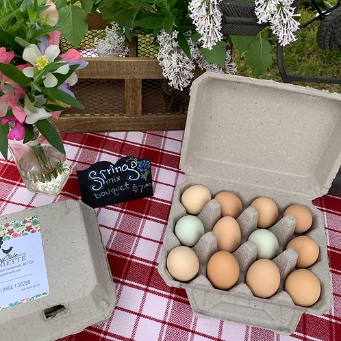 2 dozen pullet eggs