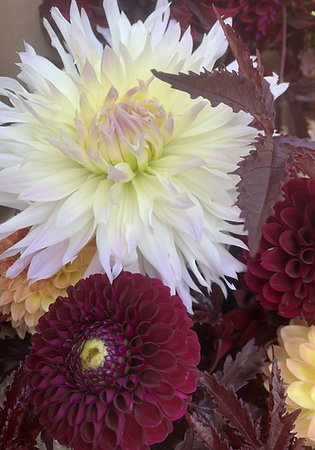 DIY bucket of seasonal blooms