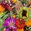 Thumbnail: Friday Flower Bar Subscription 2021