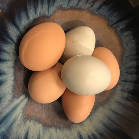 What is a pullet egg?