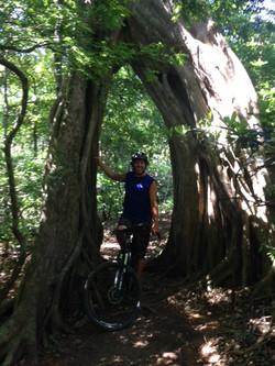 Single Trails in Costa Rica
