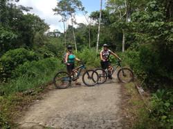 Jungle and Fat Tire