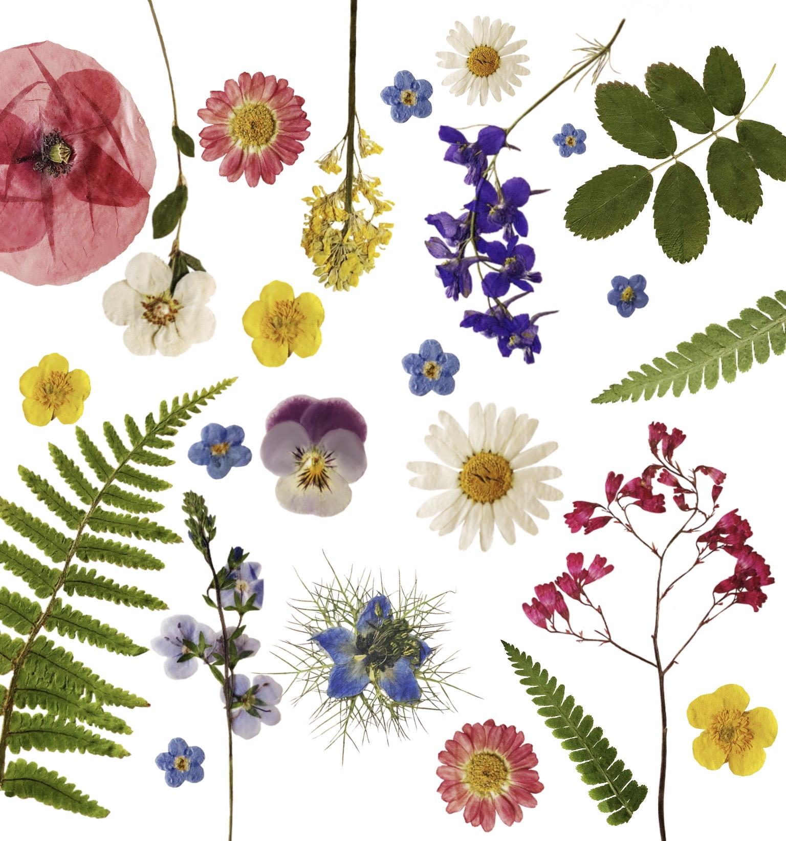 Eigen logo van bloemen