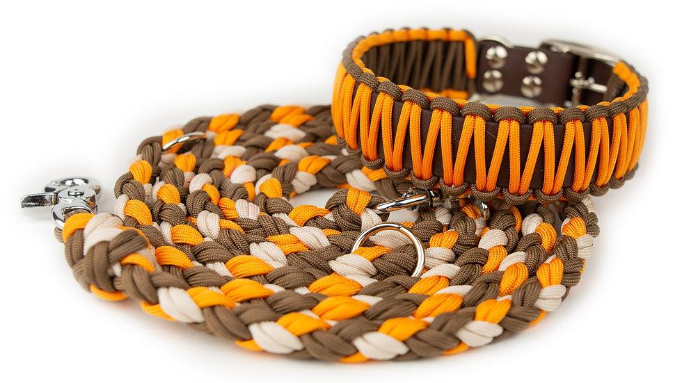 Herbstkollektion Orange