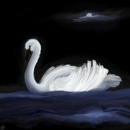 Poise/Swan