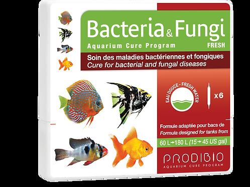 Bacteria & Fungi - x6 - Freshwater