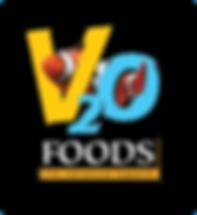 V2O logo.png