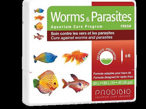 WS Worms & Parasites - x6 - Freshwater