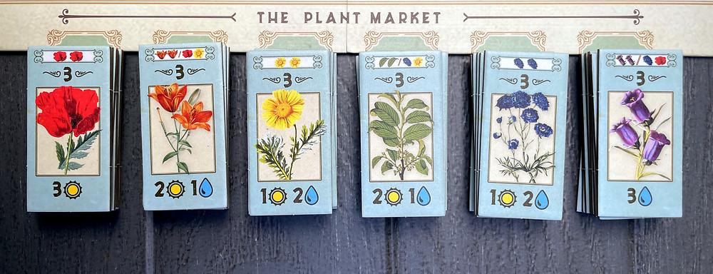 Gartenbau Plant Market