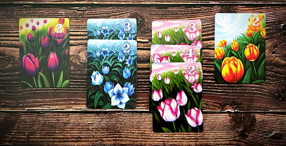 The Gift of Tulips tulip cards