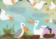 binnenkant-boek-pelikanen-totaal-10.png