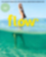 flow-2019-05-hr.jpg