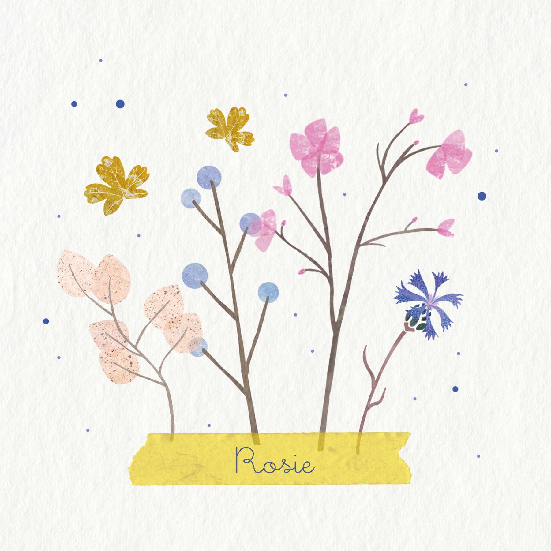 herbarium-zomer-meisje-1
