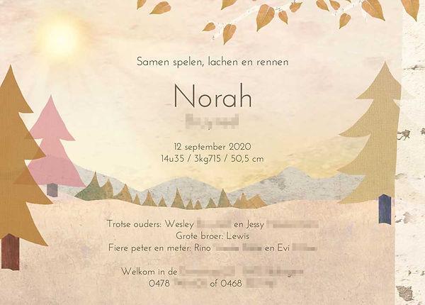 geboortekaartje-Norah-achterkant.jpg