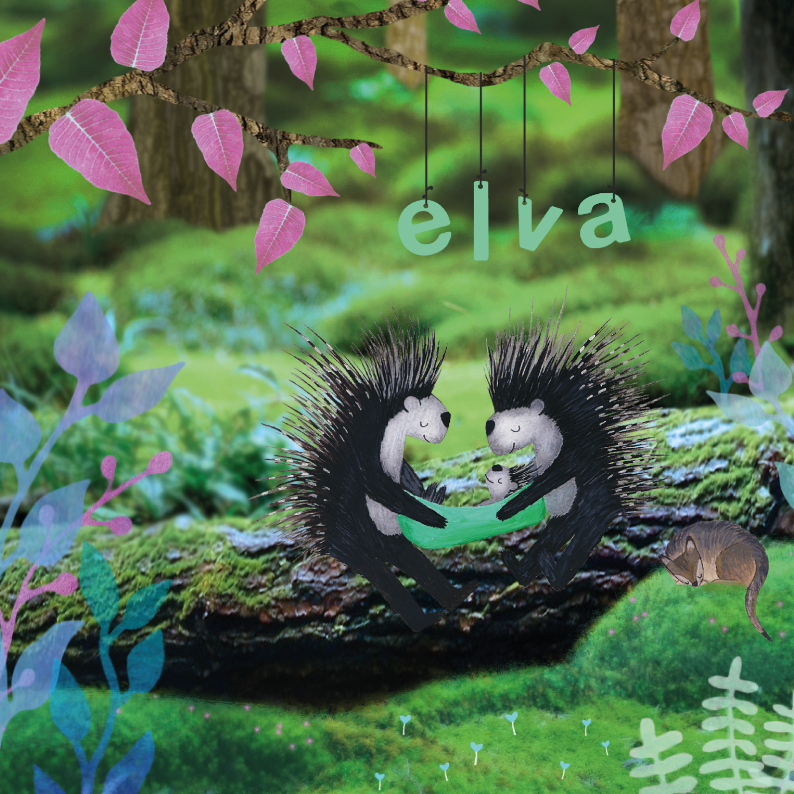 Geboortekaartje Elva