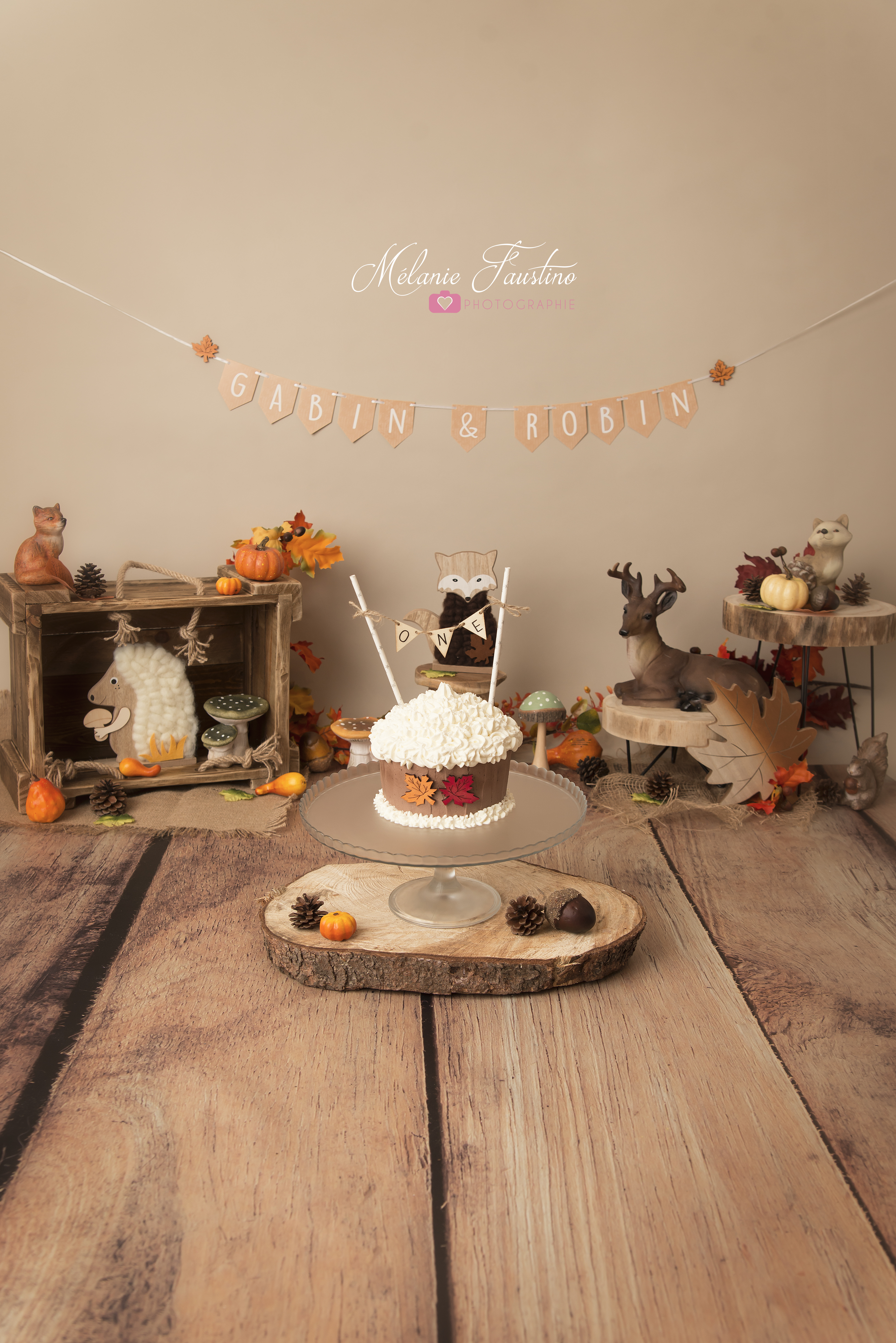 décor smash the cake studio photo 94