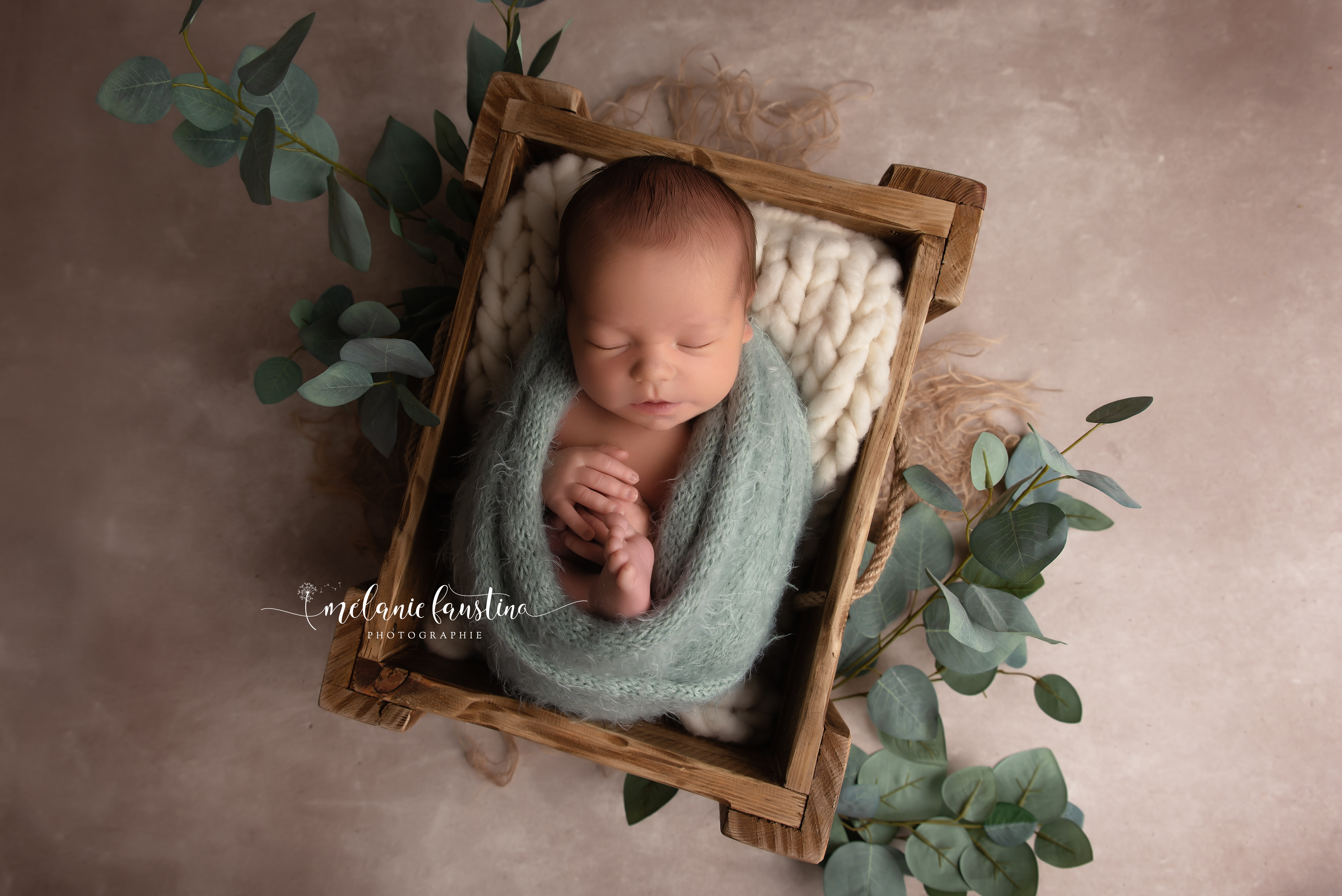 photo naissance bébé studio paris