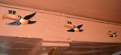 Toucans flying
