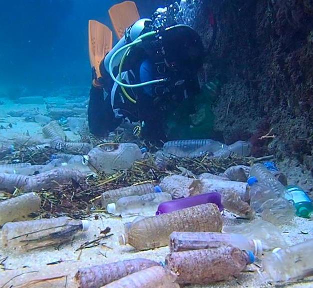 Plastic bottle dive