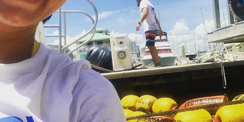 Harborage Marina- Bayboro Harbor Watergoat Cleaning