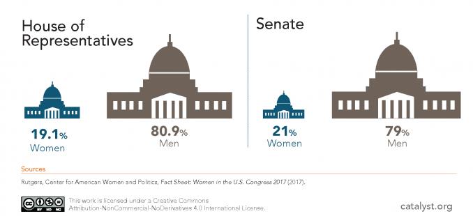 Representation in Congress in 2017