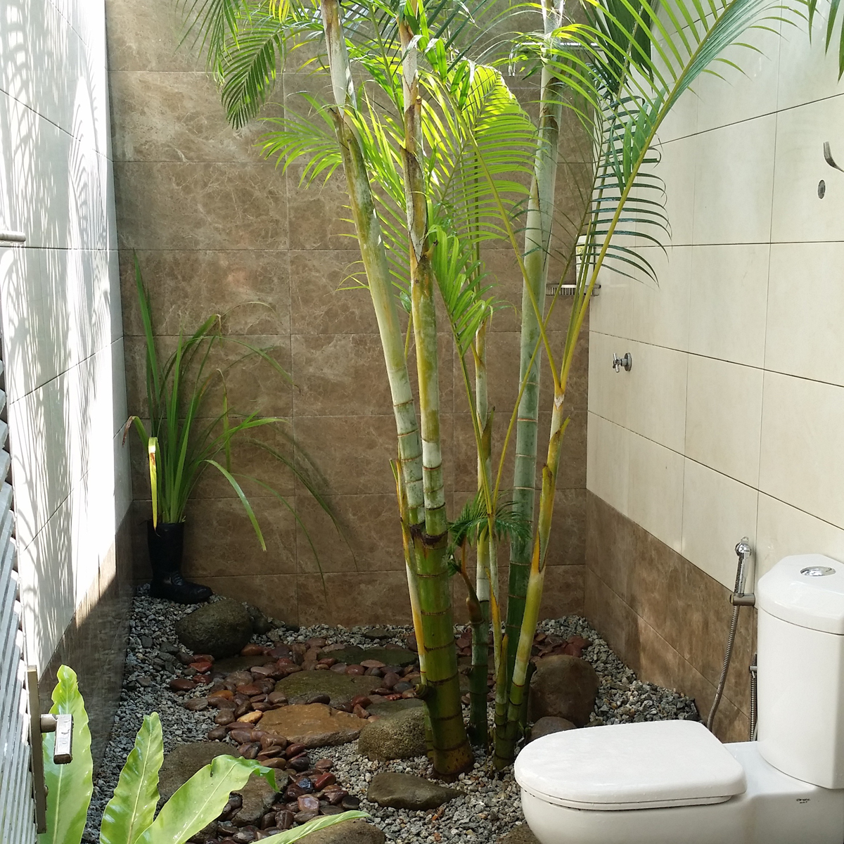 Outdoor Washroom
